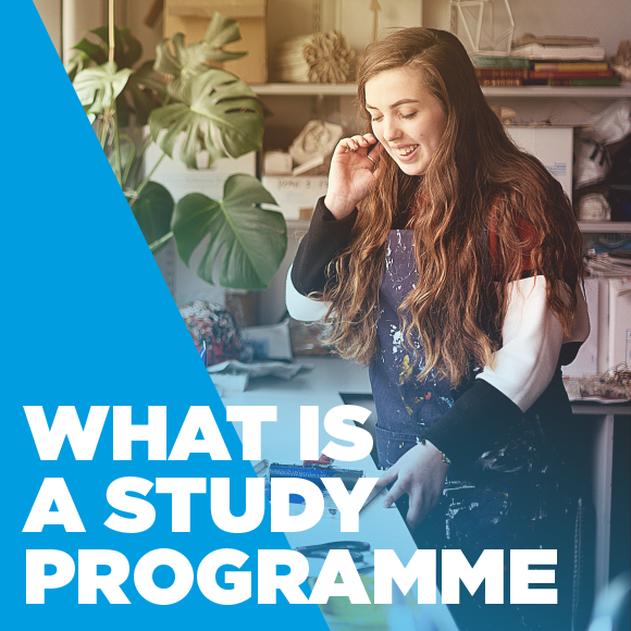 What is a study programme?